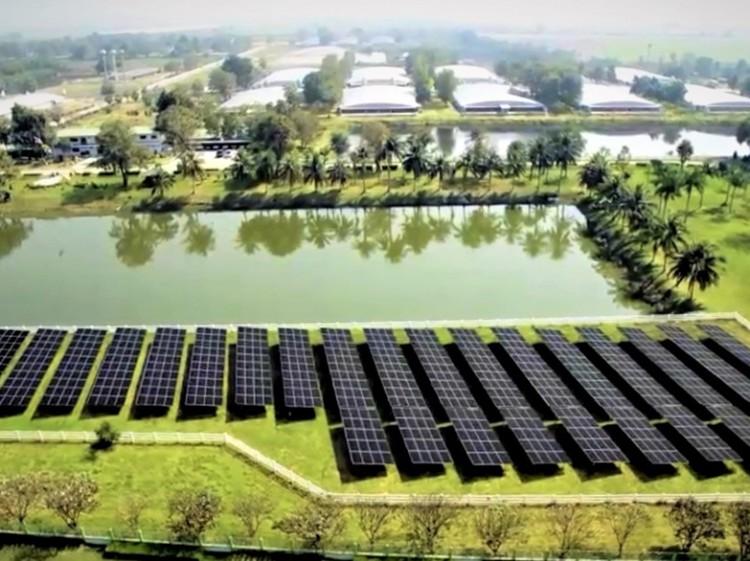 "CPF ต่อยอดฟาร์มรักษ์โลก ""Greenfarm"" หนุนใช้พลังงานทดแทน"