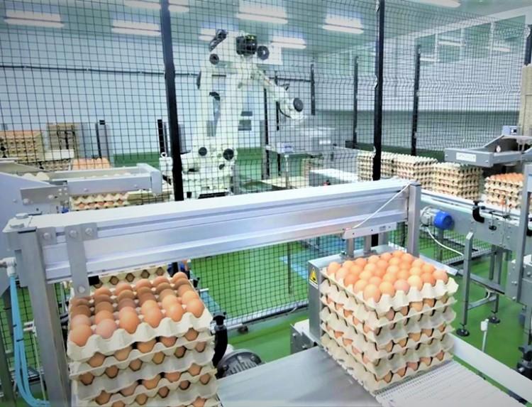 CPF หนุน 7 คอมเพล็กซ์ไก่ไข่ ใช้หลักเศรษฐกิจหมุนเวียน