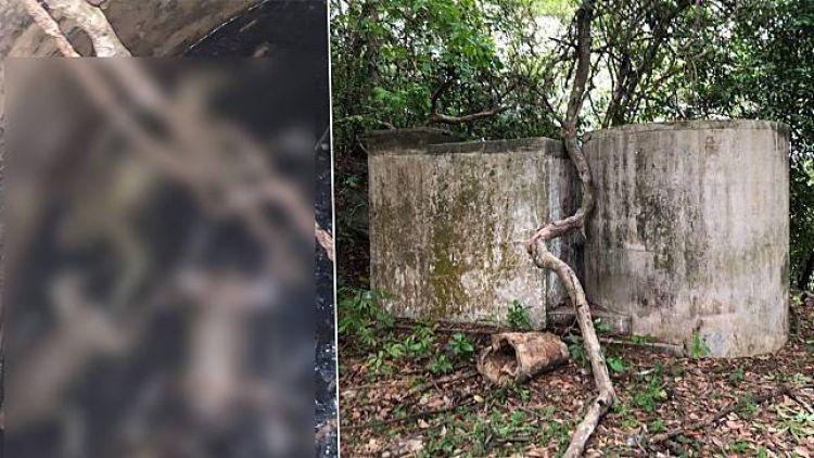 ลิงเขาตังกวนตกบ่อน้ำตาย 30 ตัว นายกฯสงขลาเต้นรีบไปดูและป้องกัน