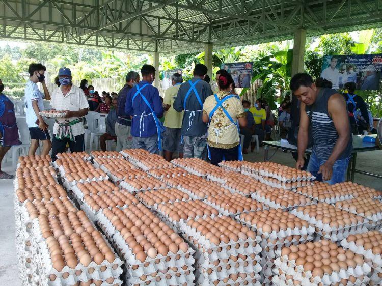 อดีต รองโฆษก ปชป.แจกไข่ไก่ 900 ครอบครัว สู้ภัยโควิด-19
