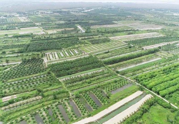 พัทลุง แก้ปัญหารุกที่สาธารณประโยชน์ ใช้ที่ดินของรัฐแทน